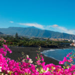 103606888 - black sand and bright flowers of playa jardin,puerto de la cruz, tenerife, spain