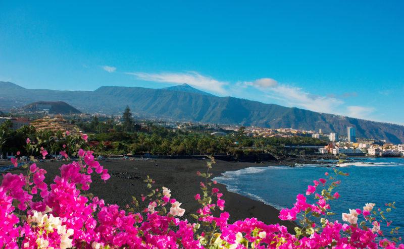 103606888 - black sand and bright flowers of playa jardin,puerto de la cruz, tenerife, spain