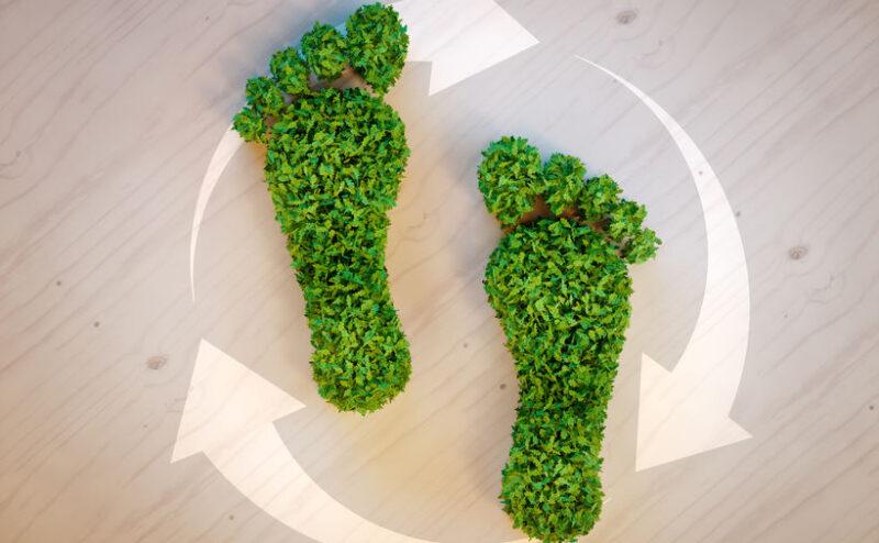 51986792 - green footprint concept